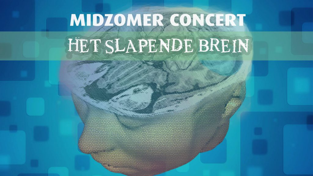 Midzomer Concert: Het Slapende Brein